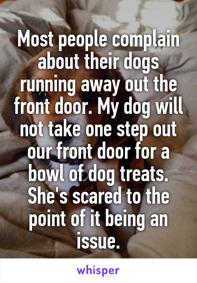 Most people complain about their dogs running away out the front door. My dog will not take one step out our front door for a bowl of dog treats. She's scared to the point of it being an issue.