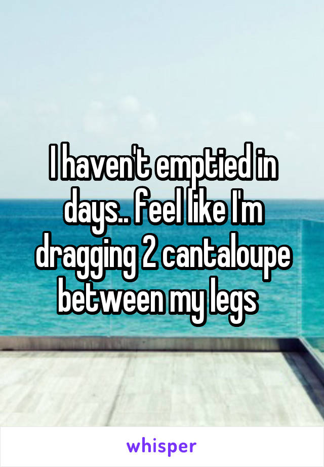 I haven't emptied in days.. feel like I'm dragging 2 cantaloupe between my legs