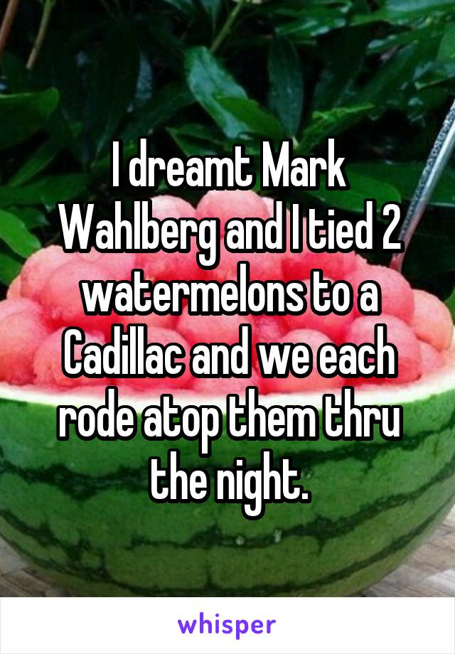 I dreamt Mark Wahlberg and I tied 2 watermelons to a Cadillac and we each rode atop them thru the night.