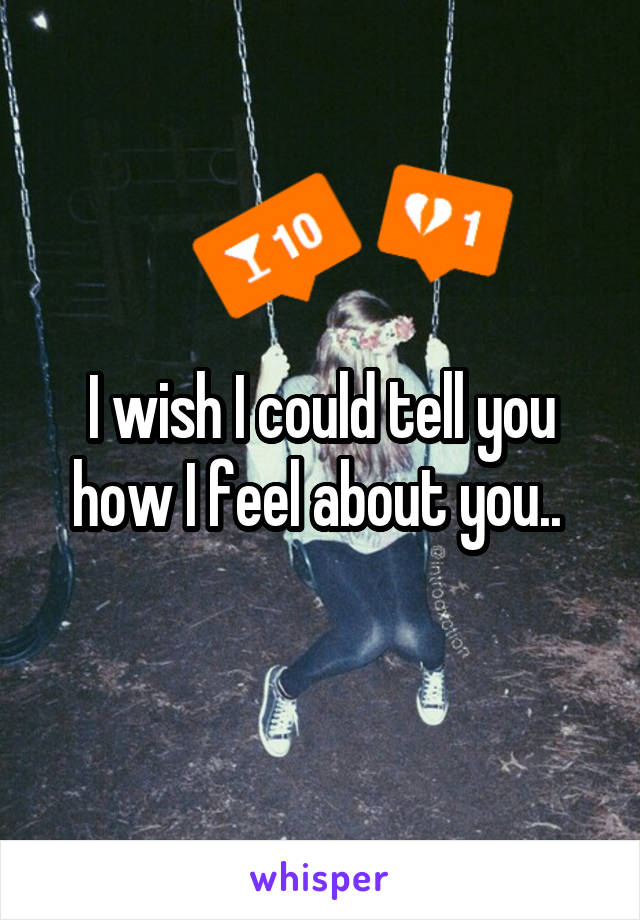 I wish I could tell you how I feel about you..