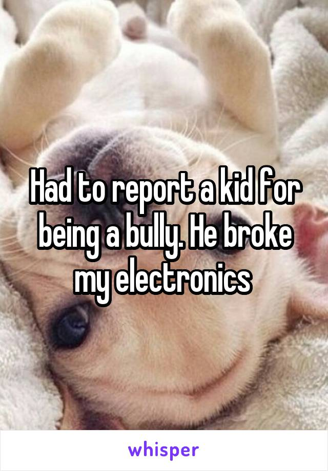 Had to report a kid for being a bully. He broke my electronics