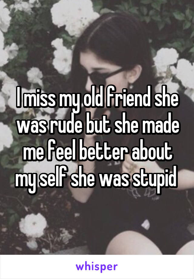 I miss my old friend she was rude but she made me feel better about my self she was stupid