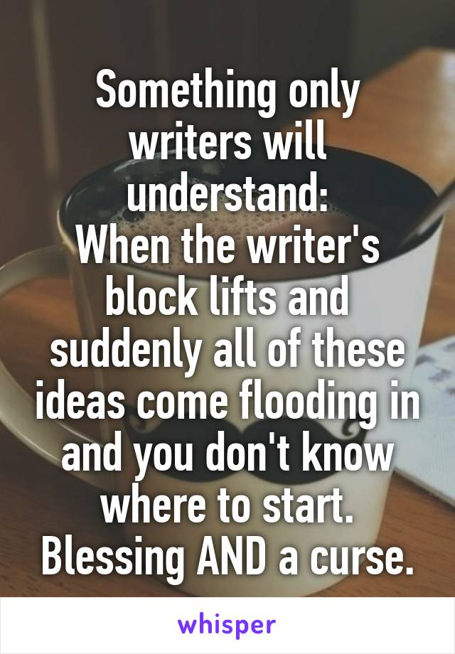 Something only writers will understand: When the writer's block lifts and suddenly all of these ideas come flooding in and you don't know where to start. Blessing AND a curse.