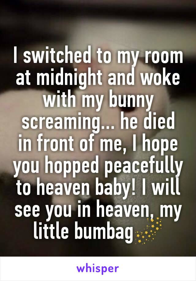 I switched to my room at midnight and woke with my bunny screaming... he died in front of me, I hope you hopped peacefully to heaven baby! I will see you in heaven, my little bumbag🌌