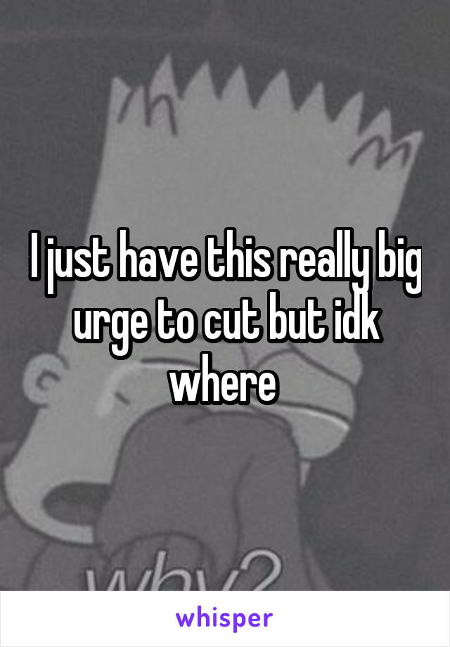 I just have this really big urge to cut but idk where