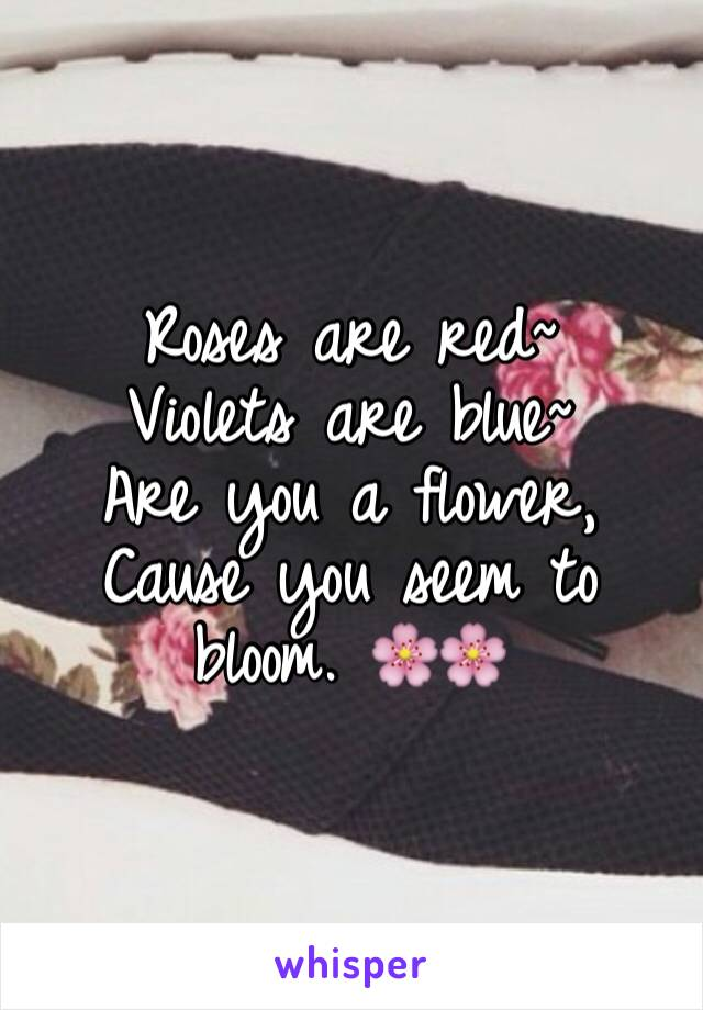 Roses are red~ Violets are blue~ Are you a flower, Cause you seem to bloom. 🌸🌸