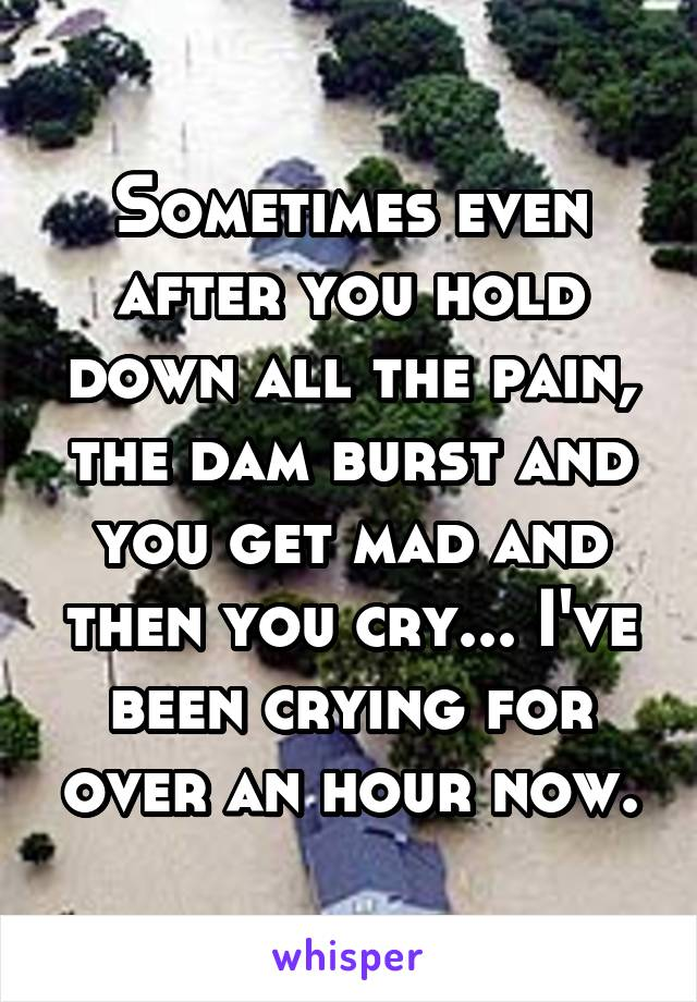 Sometimes even after you hold down all the pain, the dam burst and you get mad and then you cry... I've been crying for over an hour now.