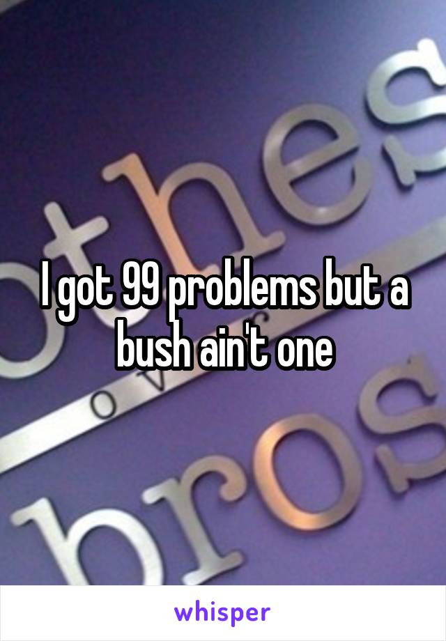 I got 99 problems but a bush ain't one
