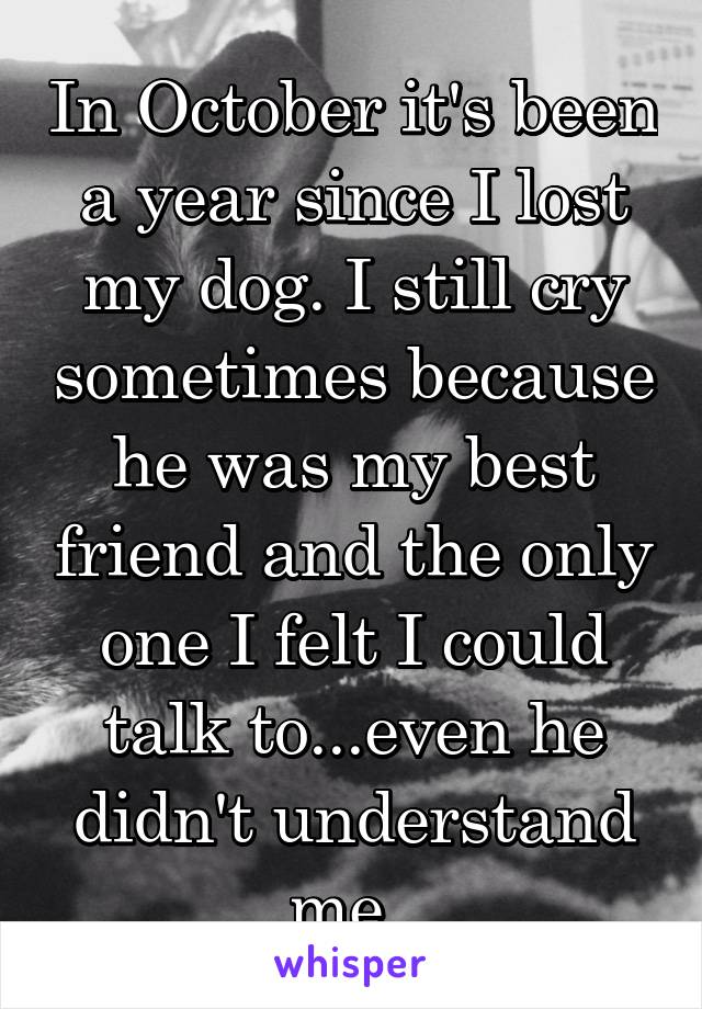 In October it's been a year since I lost my dog. I still cry sometimes because he was my best friend and the only one I felt I could talk to...even he didn't understand me.