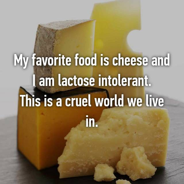My favorite food is cheese and I am lactose intolerant. This is a cruel world we live in.