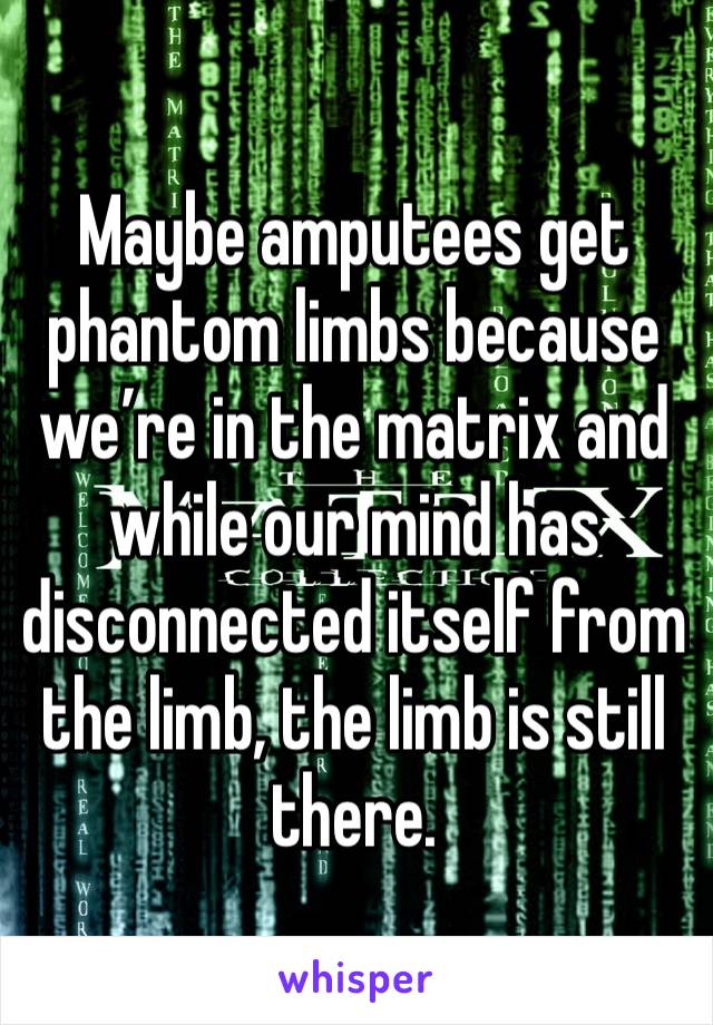 Maybe amputees get phantom limbs because we're in the matrix and while our mind has disconnected itself from the limb, the limb is still there.