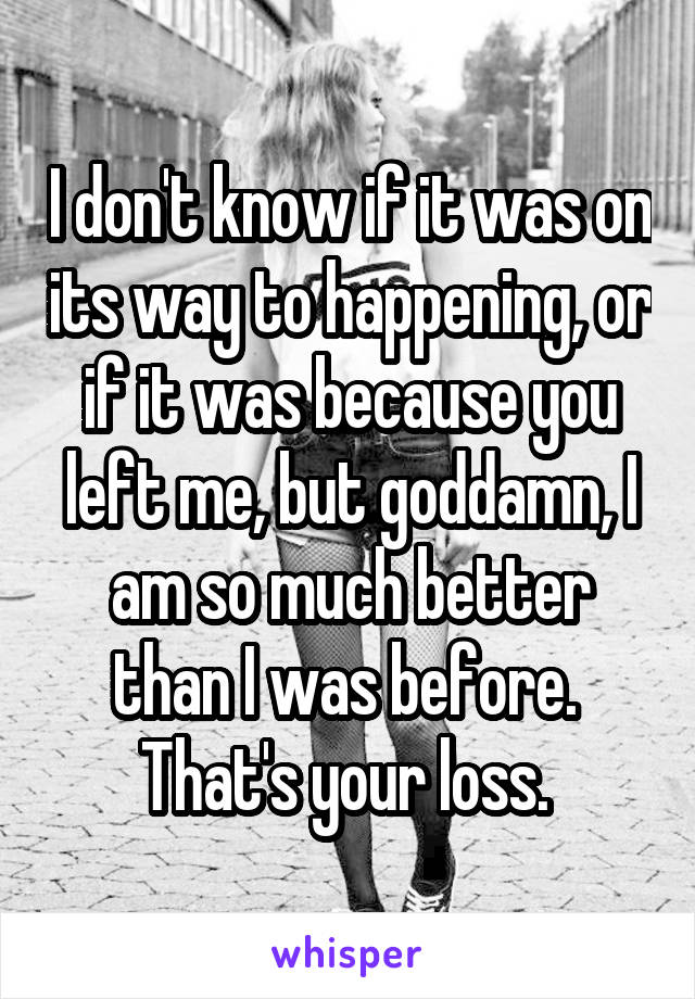 I don't know if it was on its way to happening, or if it was because you left me, but goddamn, I am so much better than I was before.  That's your loss.