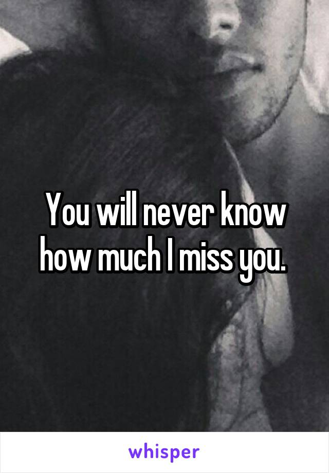 You will never know how much I miss you.
