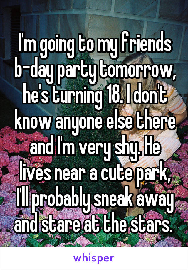 I'm going to my friends b-day party tomorrow, he's turning 18. I don't know anyone else there and I'm very shy. He lives near a cute park, I'll probably sneak away and stare at the stars.
