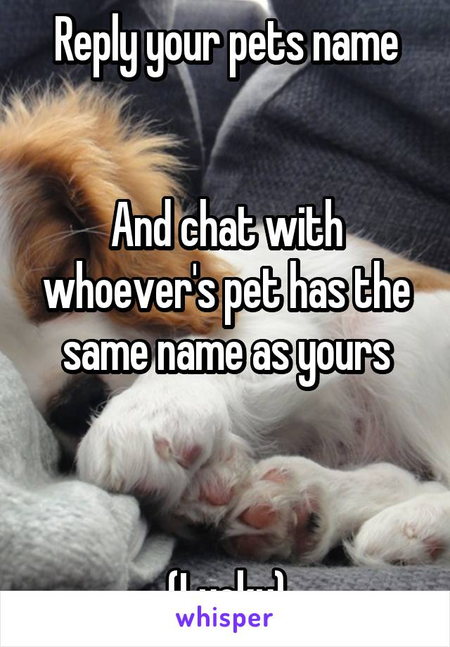 Reply your pets name   And chat with whoever's pet has the same name as yours    (Lucky)