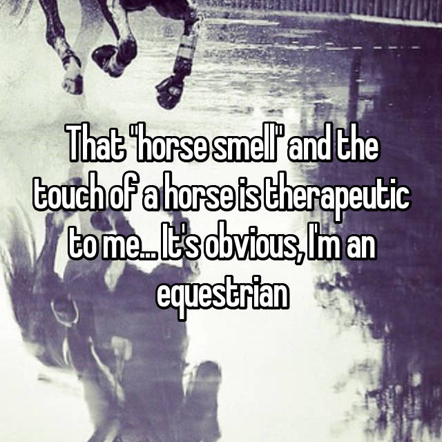 "That ""horse smell"" and the touch of a horse is therapeutic to me... It's obvious, I'm an equestrian"