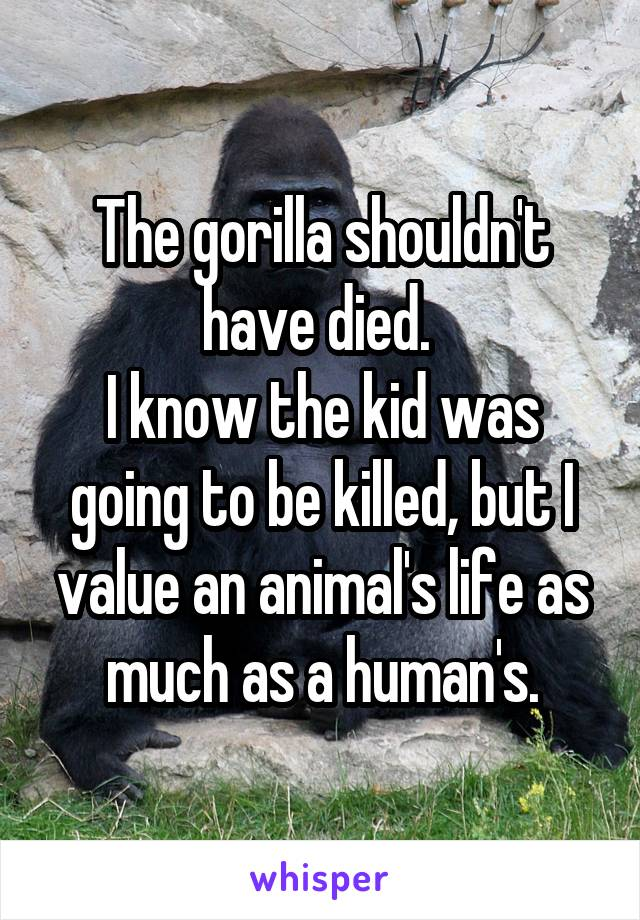 The gorilla shouldn't have died.  I know the kid was going to be killed, but I value an animal's life as much as a human's.
