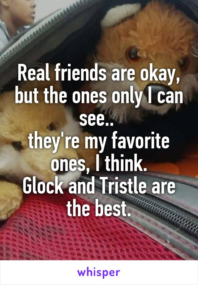 Real friends are okay, but the ones only I can see..  they're my favorite ones, I think. Glock and Tristle are the best.