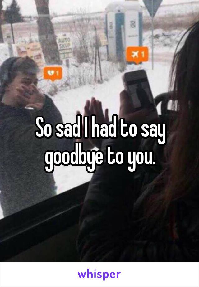 So sad I had to say goodbye to you.