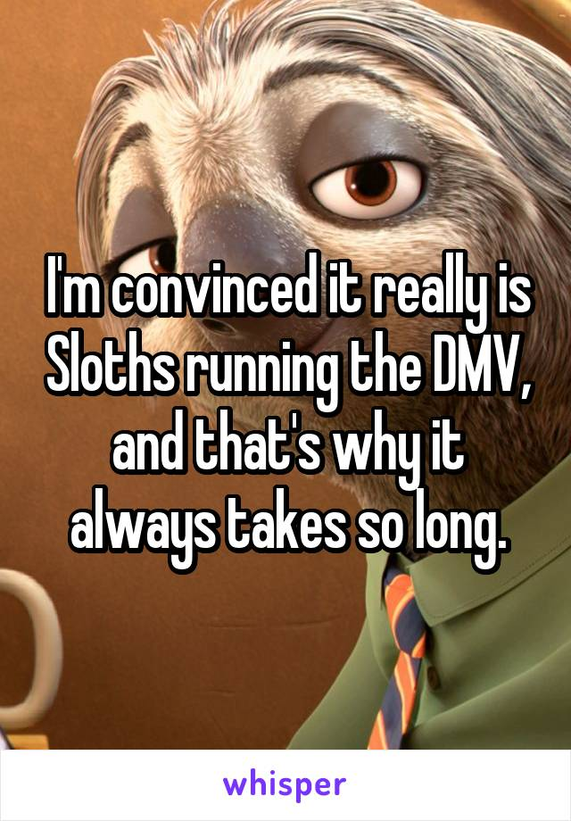 I'm convinced it really is Sloths running the DMV, and that's why it always takes so long.