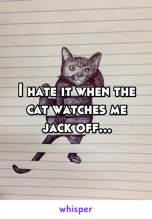 I hate it when the cat watches me jack off...