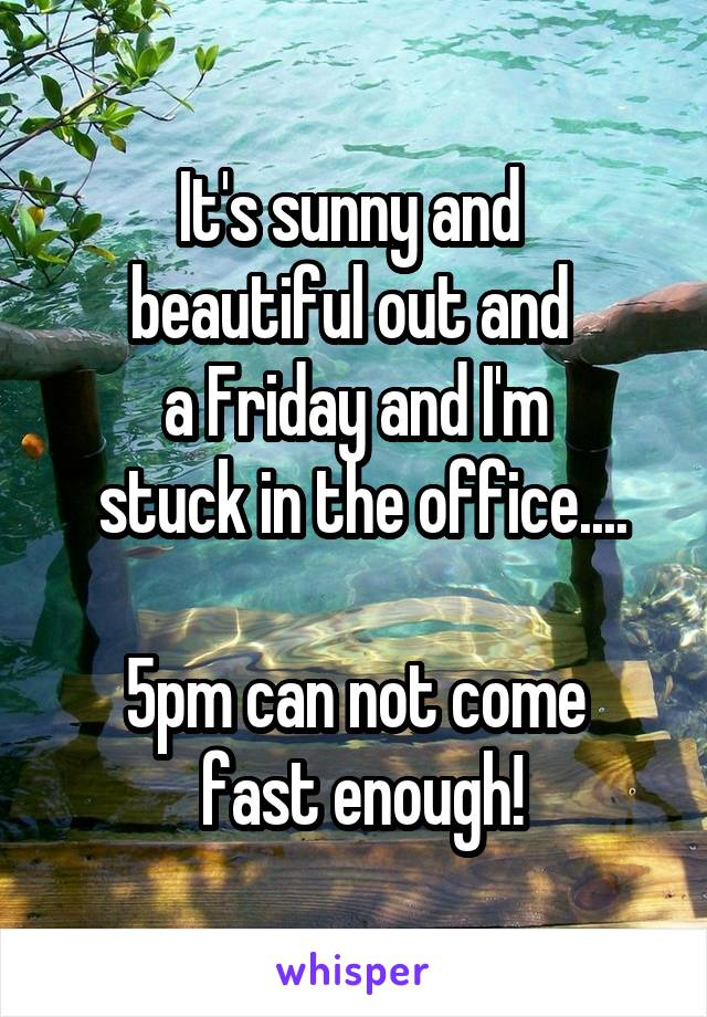It's sunny and  beautiful out and  a Friday and I'm  stuck in the office....  5pm can not come  fast enough!