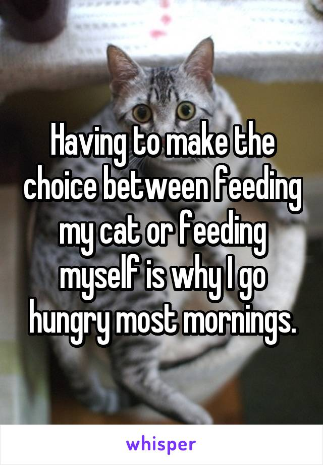 Having to make the choice between feeding my cat or feeding myself is why I go hungry most mornings.