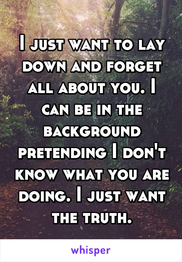 I just want to lay down and forget all about you. I can be in the background pretending I don't know what you are doing. I just want the truth.