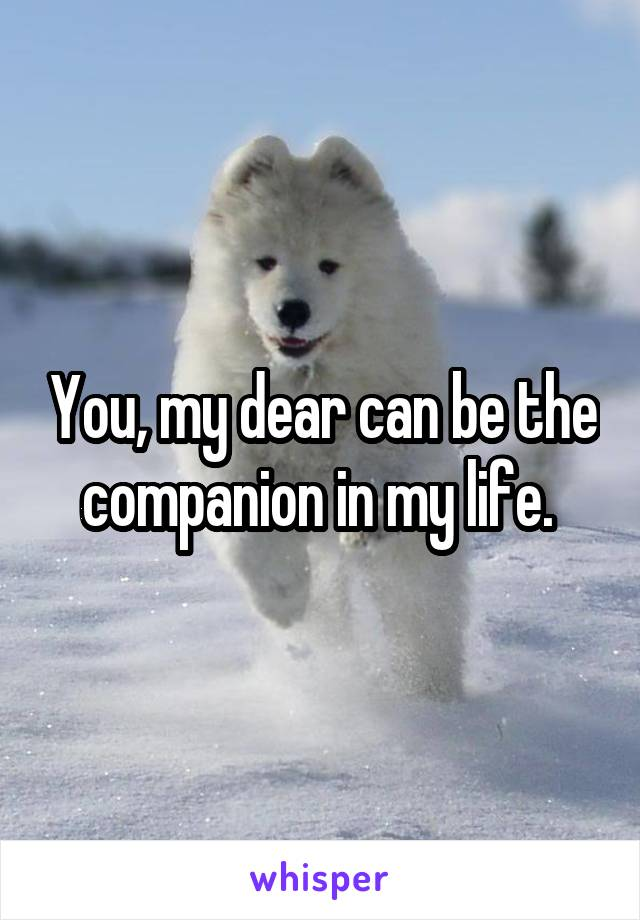 You, my dear can be the companion in my life.
