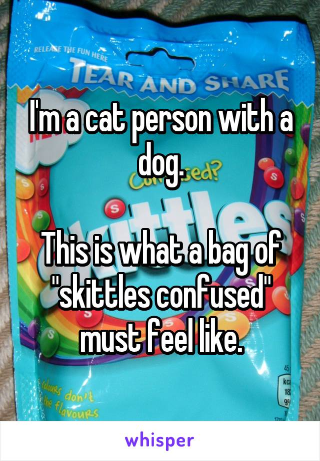 "I'm a cat person with a dog.  This is what a bag of ""skittles confused"" must feel like."
