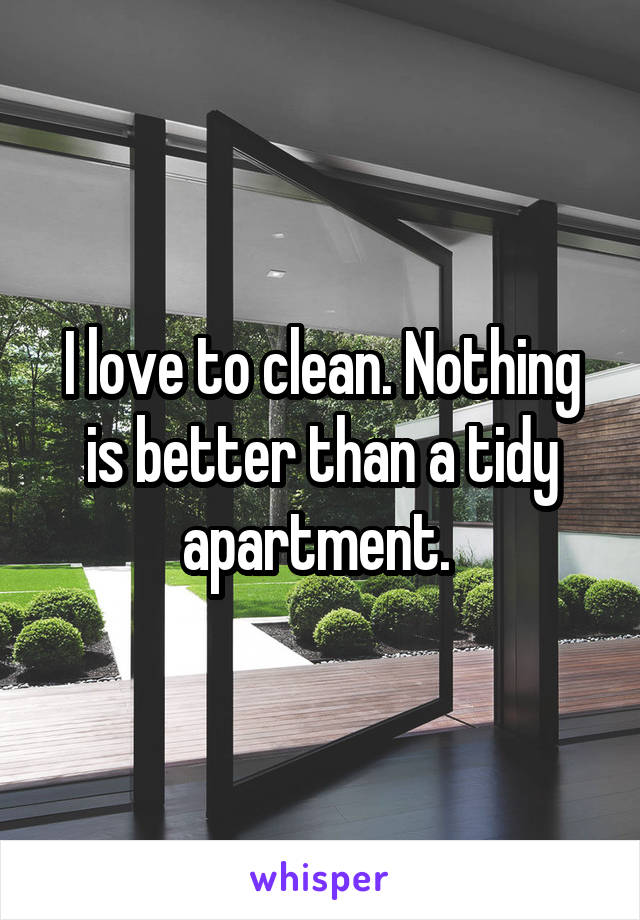 I love to clean. Nothing is better than a tidy apartment.