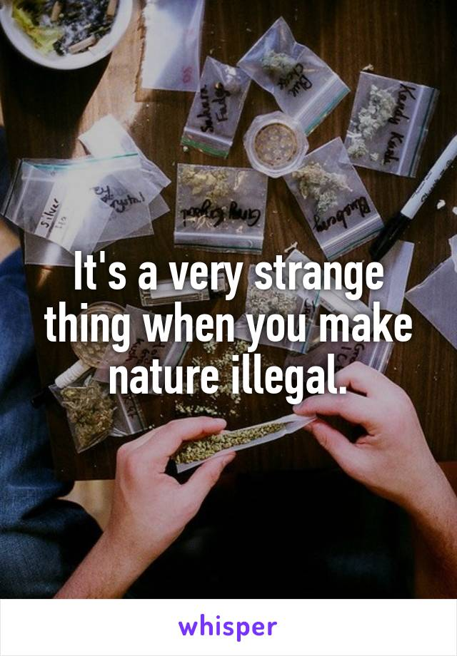 It's a very strange thing when you make nature illegal.