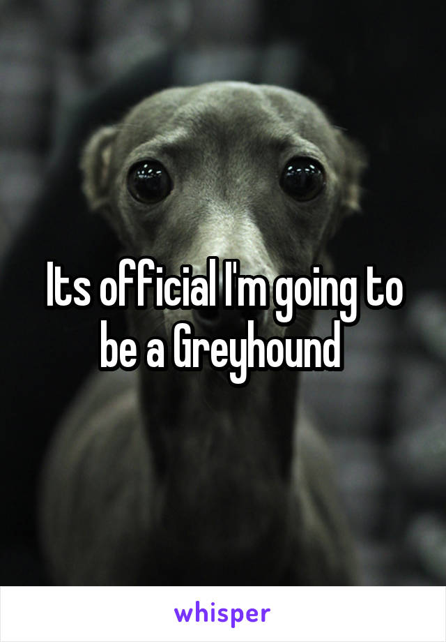 Its official I'm going to be a Greyhound