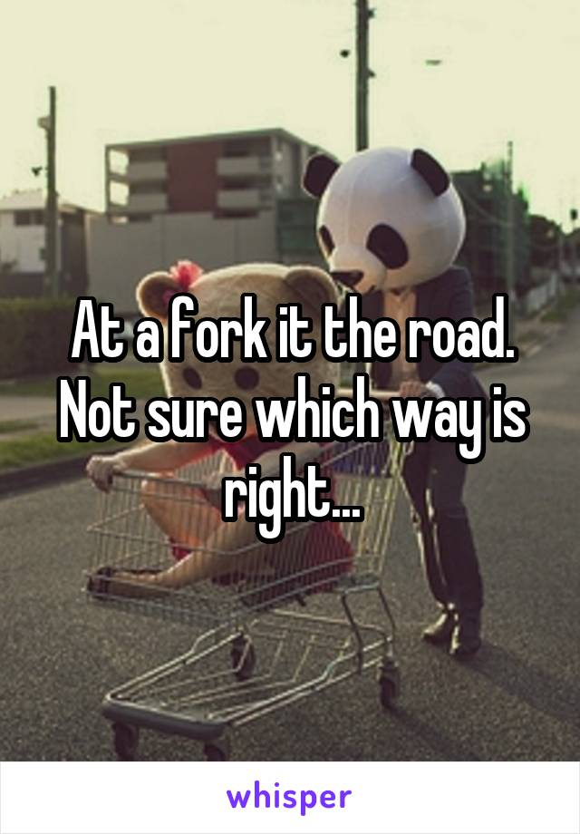 At a fork it the road. Not sure which way is right...