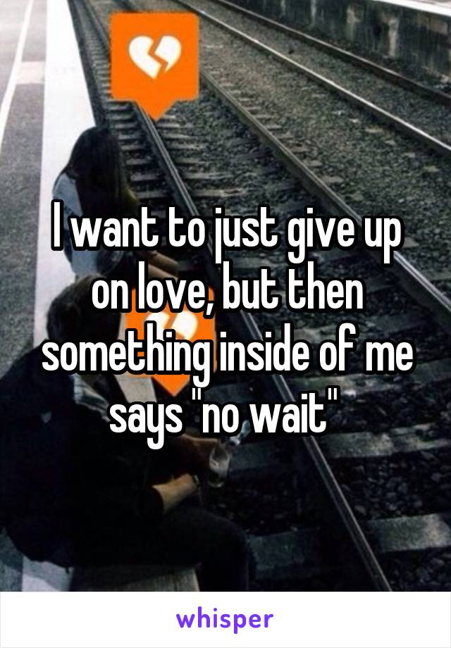 """I want to just give up on love, but then something inside of me says """"no wait"""""""