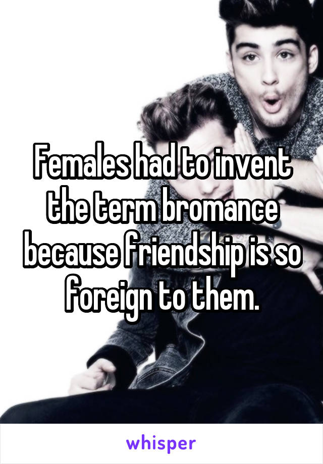 Females had to invent the term bromance because friendship is so foreign to them.