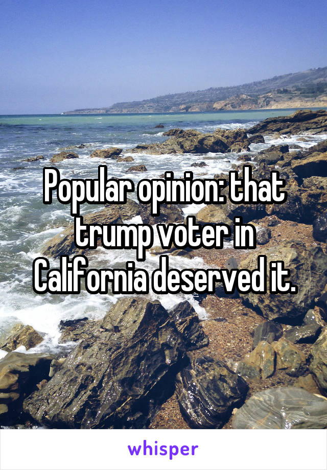 Popular opinion: that trump voter in California deserved it.