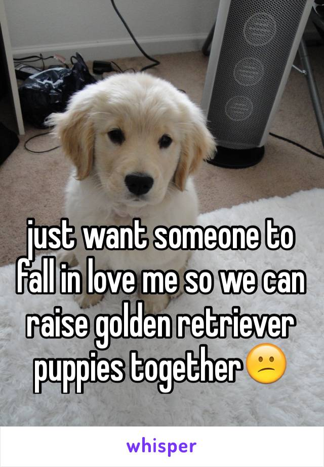 just want someone to fall in love me so we can raise golden retriever puppies together😕