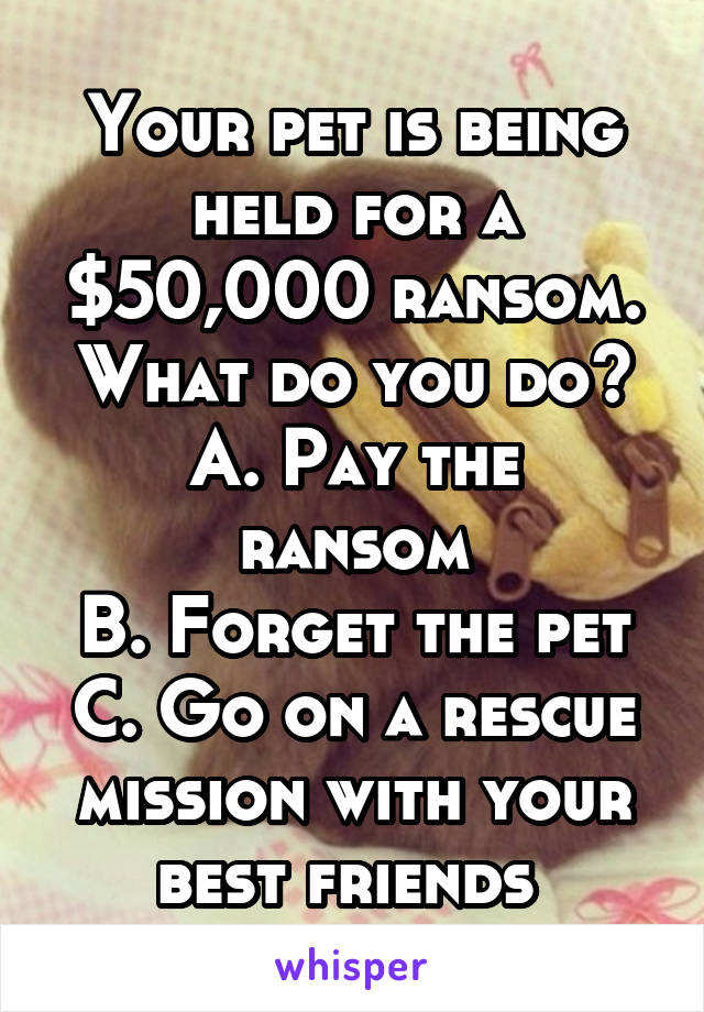 Your pet is being held for a $50,000 ransom. What do you do? A. Pay the ransom B. Forget the pet C. Go on a rescue mission with your best friends