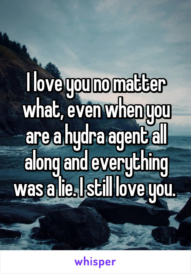 I love you no matter what, even when you are a hydra agent all along and everything was a lie. I still love you.