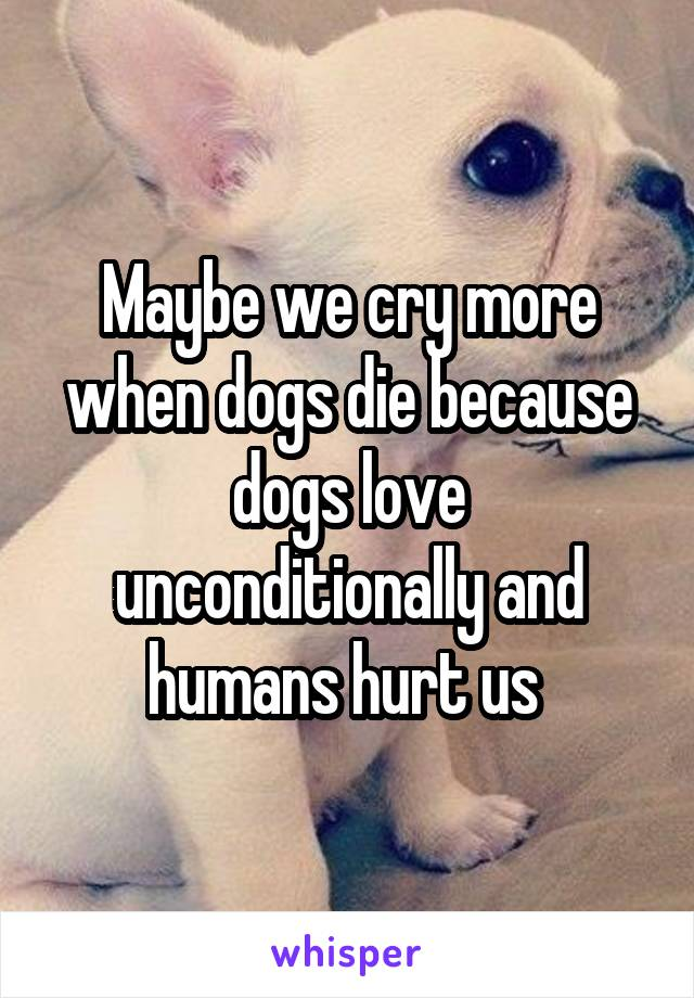 Maybe we cry more when dogs die because dogs love unconditionally and humans hurt us