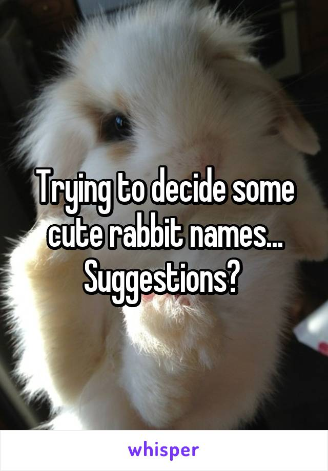 Trying to decide some cute rabbit names... Suggestions?