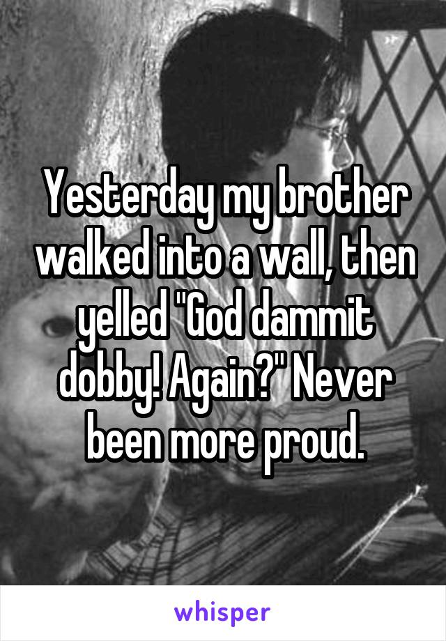 """Yesterday my brother walked into a wall, then yelled """"God dammit dobby! Again?"""" Never been more proud."""