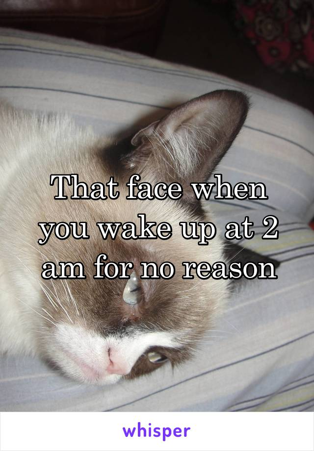 That face when you wake up at 2 am for no reason