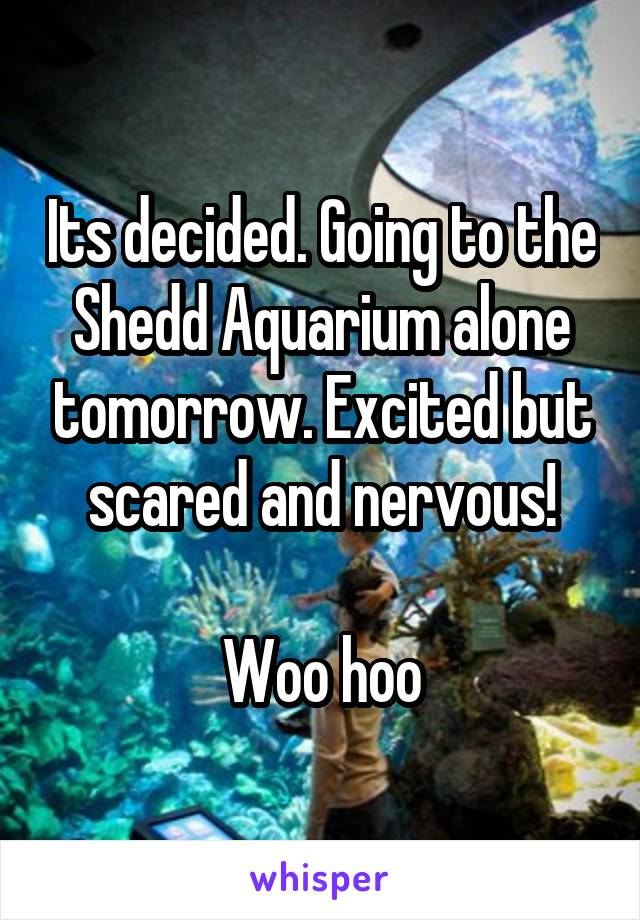 Its decided. Going to the Shedd Aquarium alone tomorrow. Excited but scared and nervous!  Woo hoo
