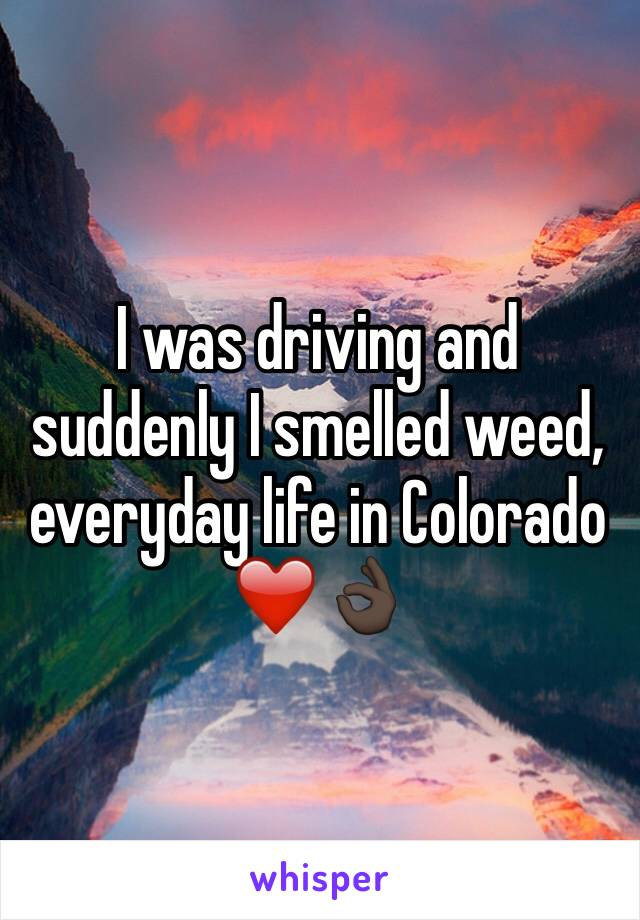 I was driving and suddenly I smelled weed, everyday life in Colorado ❤️👌🏿