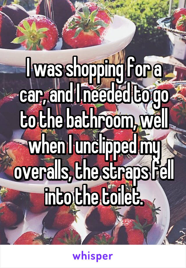 I was shopping for a car, and I needed to go to the bathroom, well when I unclipped my overalls, the straps fell into the toilet.