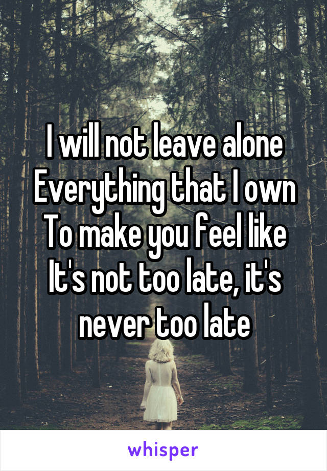 I will not leave alone Everything that I own To make you feel like It's not too late, it's never too late