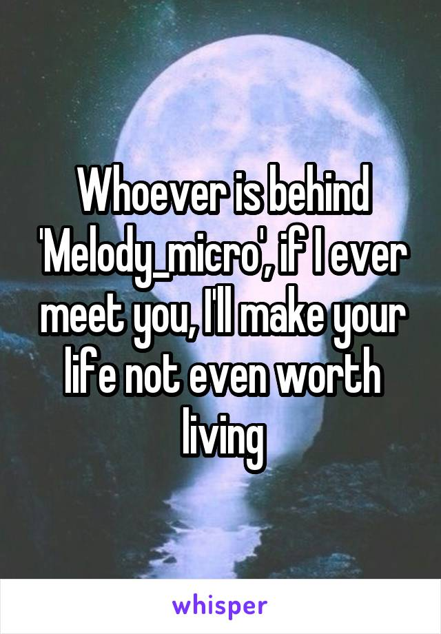 Whoever is behind 'Melody_micro', if I ever meet you, I'll make your life not even worth living