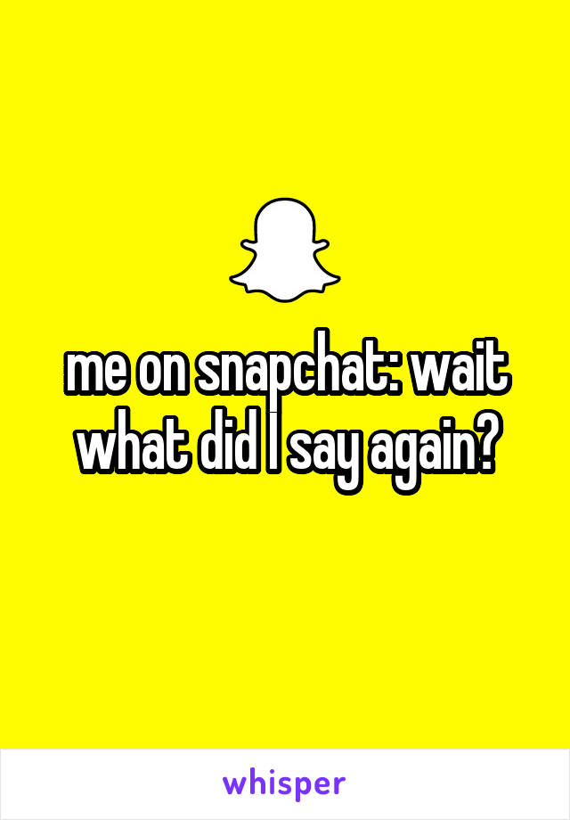 me on snapchat: wait what did I say again?